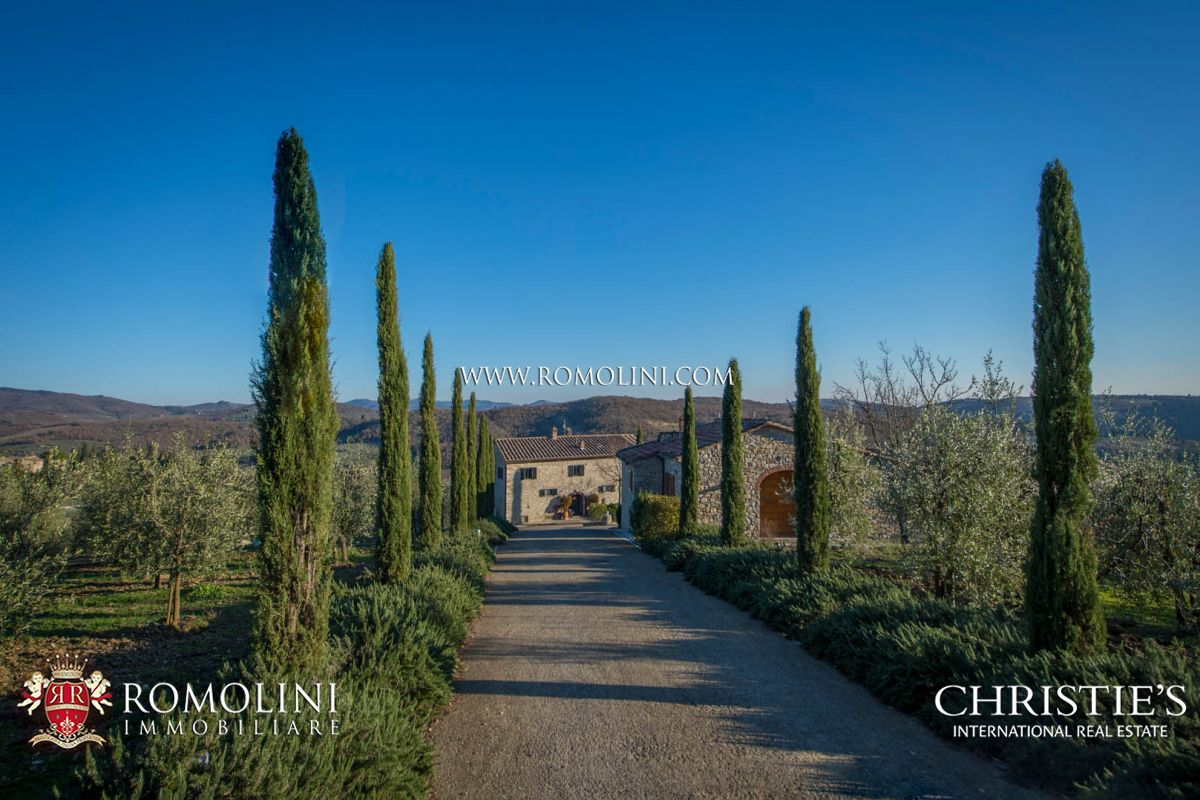 TYPICAL TUSCAN HAMLET WITH CELLAR AND VINEYARDS FOR SALE, CHIANTI CLASSICO