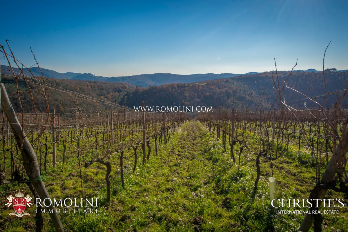 CHIANTI CLASSICO: PRESTIGIOUS WINERY WITH VINEYARD FOR SALE