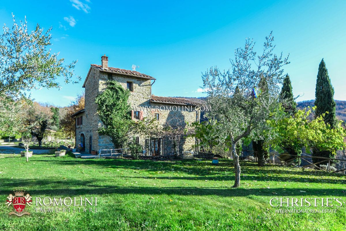 ORGANIC FARM WITH VINEYARDS FOR SALE IN FLORENCE
