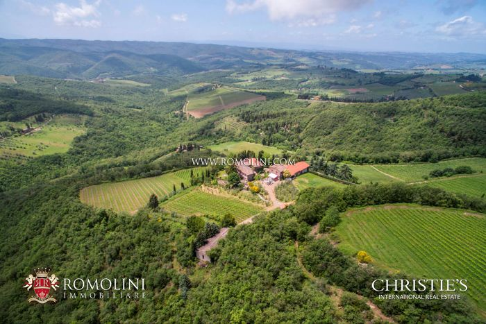 MULTI-AWARD WINNING ORGANIC WINERY CHIANTI CLASSICO 10 Ha VINEYARDS PANZANO IN CHIANTI
