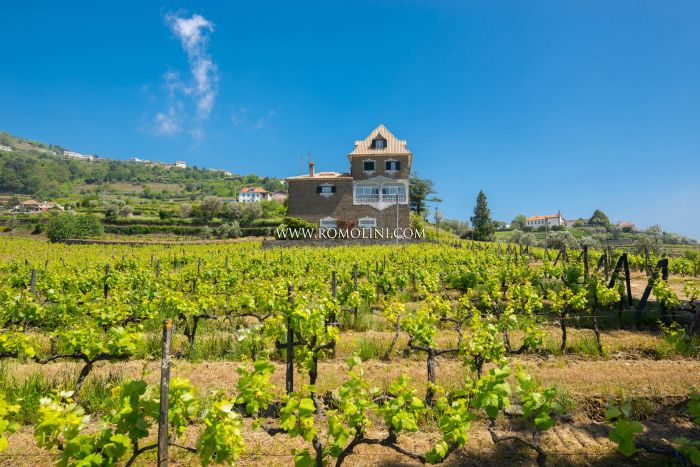 PORTUGAL PROPERTY SALE DOURO VALLEY, VINEYARDS QUINTA SALE