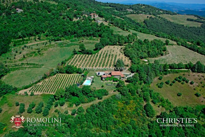 FARMHOUSE WITH PANORAMIC VIEW AND VINEYARD FOR SALE IN UMBRIA
