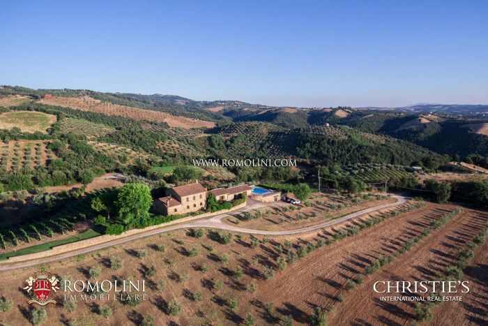 RESTORED COUNTRY HOUSE WITH MORELLINO DI SCANSANO VINAYRDS FOR SALE IN SCARLINO, TUSCANY