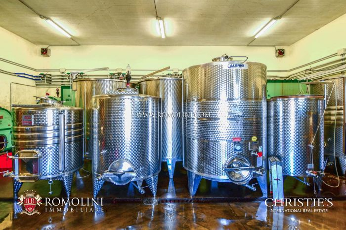 ORGANIC WINERY AND VINEYARDS FOR SALE IN TUSCANY