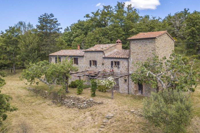 RUSTIC COUNTRY HOUSE FOR SALE IN CORTONA, TUSCANY
