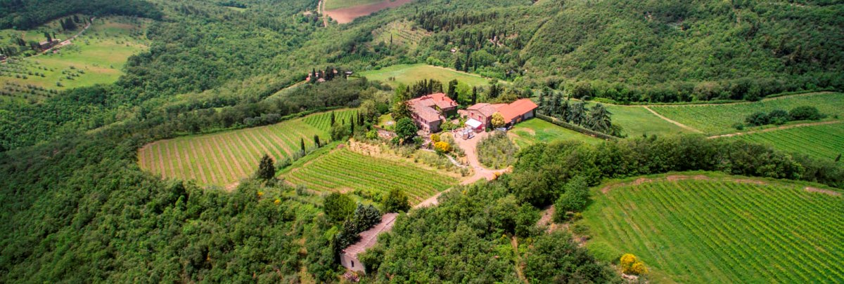 MULTI-AWARD WINNING WINERY CHIANTI CLASSICO 10 HA VINEYARDS PANZANO IN CHIANTI
